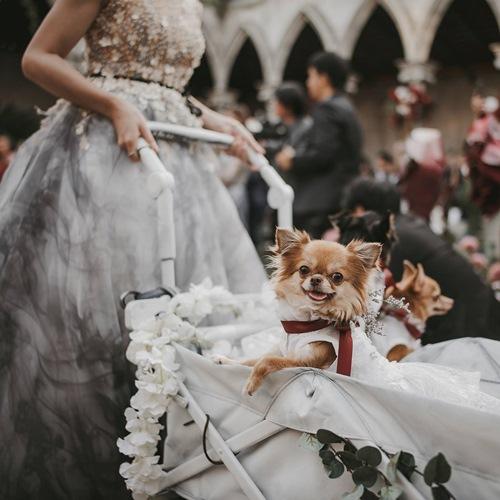 สตูดิโอจัดงานแต่งงานย่านลาดพร้าว