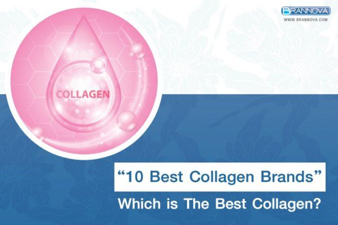 Best Collagen Brands